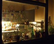 View through the kitchen window